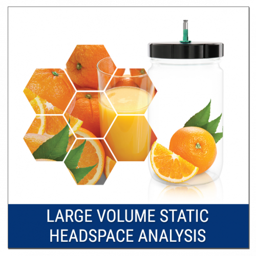 Large Volume Static Headspace Analysis (LVSH)