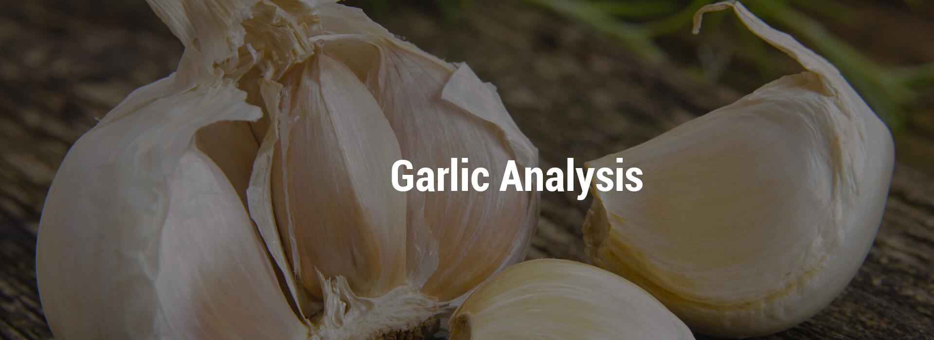 LVHS-Garlic-header