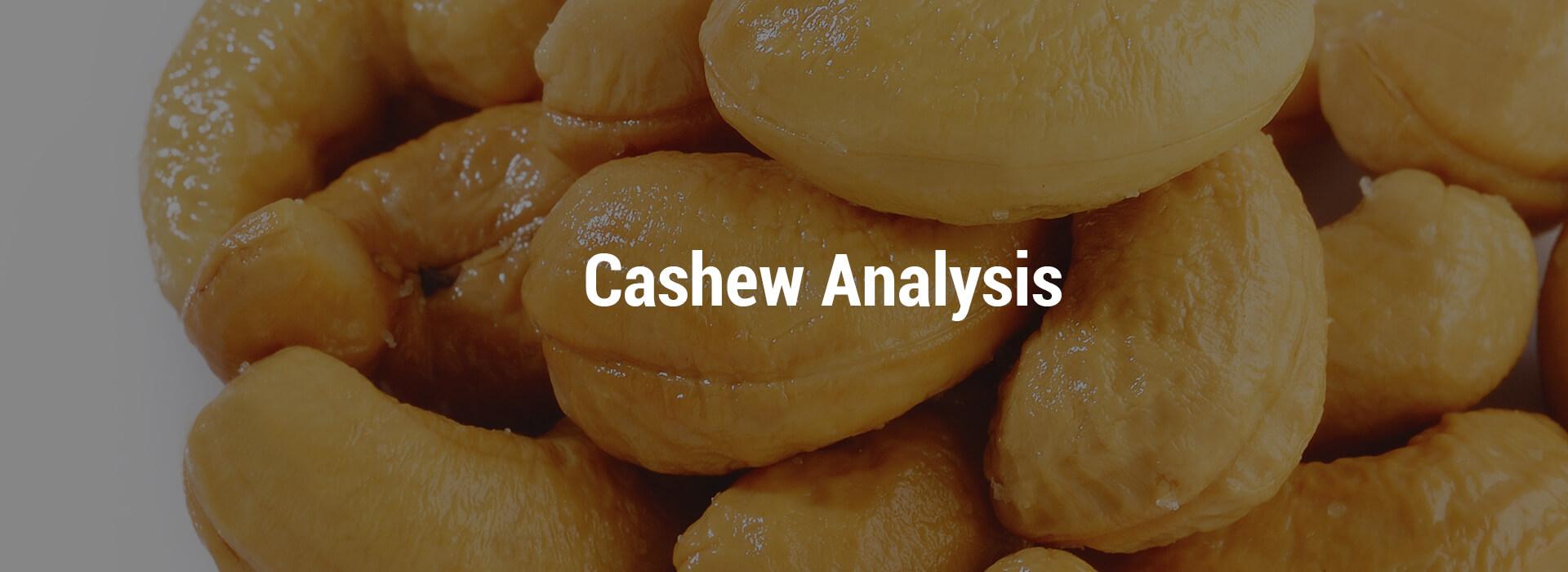 HS-cashew-header-1