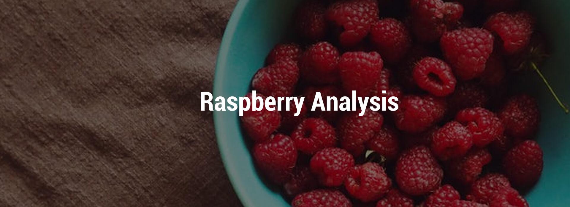 HS-raspberry-header