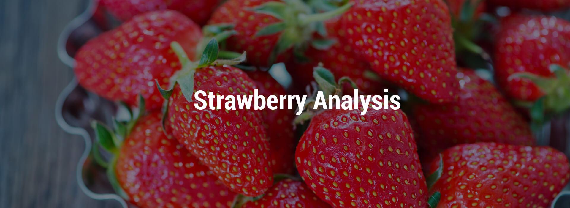 HS-strawberry-header